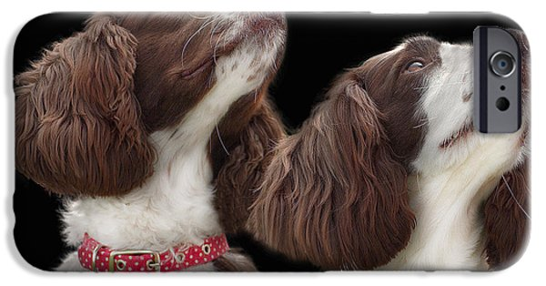 Black Dog iPhone Cases - Two spaniels iPhone Case by Linsey Williams