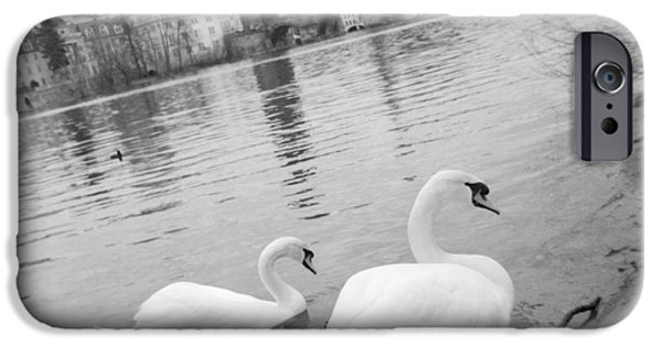 Reflections In River iPhone Cases - Two Swans In A River, Vltava River iPhone Case by Panoramic Images