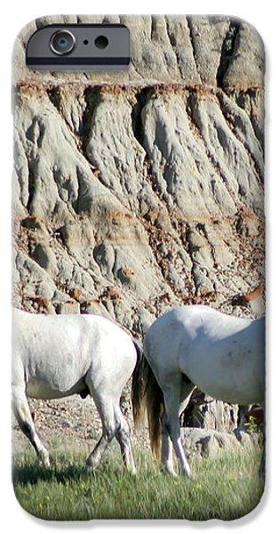 Two Wild White Stallions iPhone Case by Sabrina L Ryan
