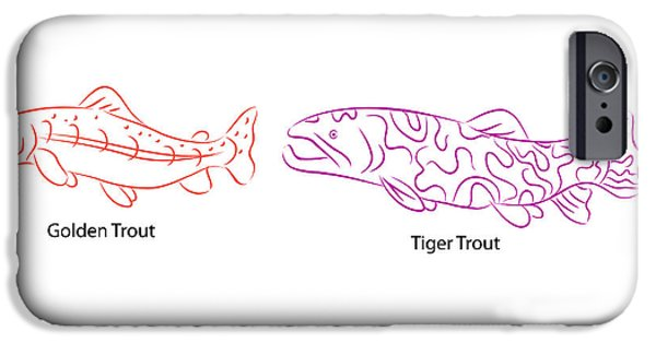 Golden Trout iPhone Cases - Types of Trout iPhone Case by John Takai