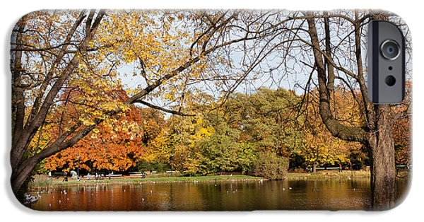 Nature Center Pond iPhone Cases - Ujazdowski Park in Warsaw iPhone Case by Artur Bogacki