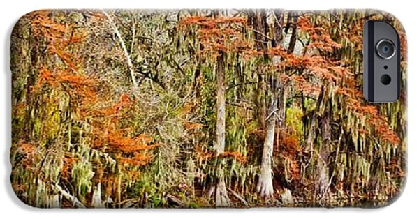 Michael iPhone Cases - Ultimate Cypress Panoramic iPhone Case by Michael Tidwell