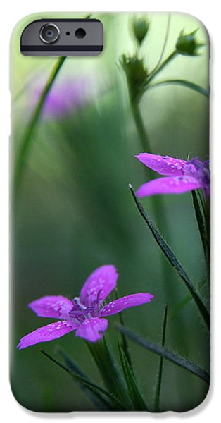Ultra Violet iPhone Case by Neal  Eslinger