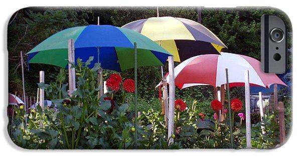 Umbrella Pastels iPhone Cases - Umbrellas and Daliahs iPhone Case by David Henderson