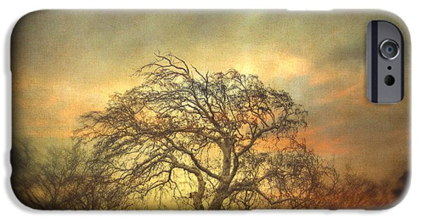Poetic Photographs iPhone Cases - Un dernier crepuscule iPhone Case by Taylan Soyturk