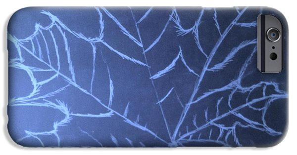 3.14 iPhone Cases - Uncertaintys Leaf iPhone Case by Jason Padgett