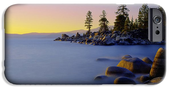 Pine Tree iPhone Cases - Under Clear Skies iPhone Case by Chad Dutson