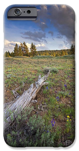 Meadow Photographs iPhone Cases - Under Stormy Skies iPhone Case by Mike  Dawson