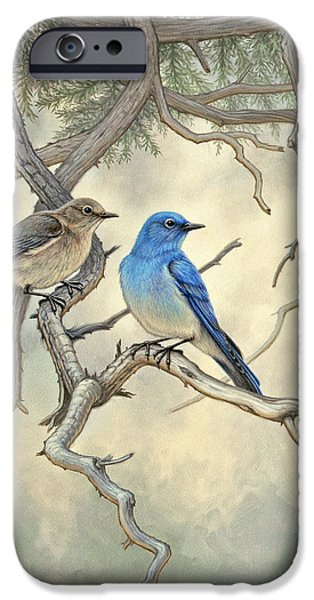 Yellowstone Park iPhone Cases - Under the old Juniper-Mountain Bluebirds iPhone Case by Paul Krapf