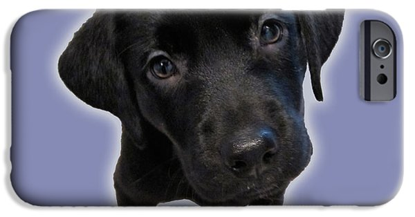 Puppy Iphone Case iPhone Cases - Understanding iPhone Case by Debbi Downs