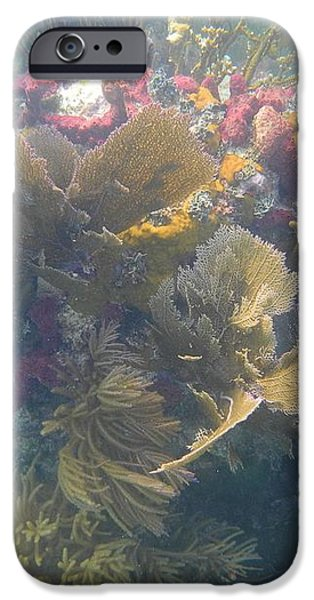 Underwater Colors iPhone Case by Adam Jewell