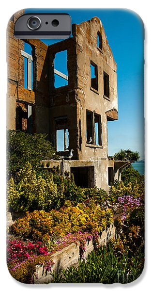 Alcatraz iPhone Cases - Unexpected Beauty iPhone Case by AJ Goldian
