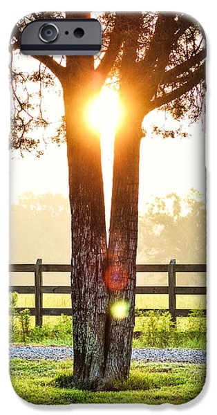 Nike Photographs iPhone Cases - Unexpected Places iPhone Case by Shelby  Young