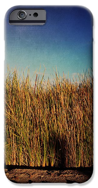 Cattails iPhone Cases - Unexpected Things iPhone Case by Laurie Search