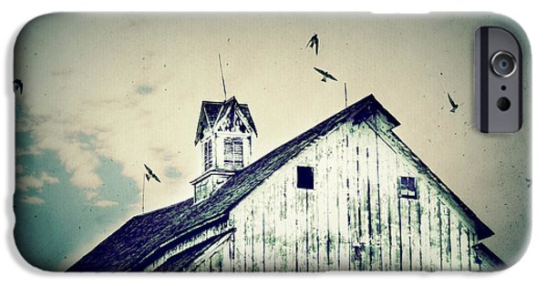 Barn Swallow iPhone Cases - Unique Cupola iPhone Case by Julie Hamilton