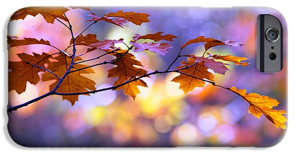 Autumn iPhone Cases - United Colours of Autumn II iPhone Case by Roeselien Raimond