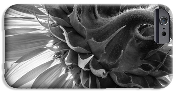 Close Up Floral iPhone Cases - Up close iPhone Case by Chris Fletcher