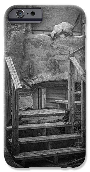 Boarded Up iPhone Cases - Urban Exploration - bw iPhone Case by Nikolyn McDonald
