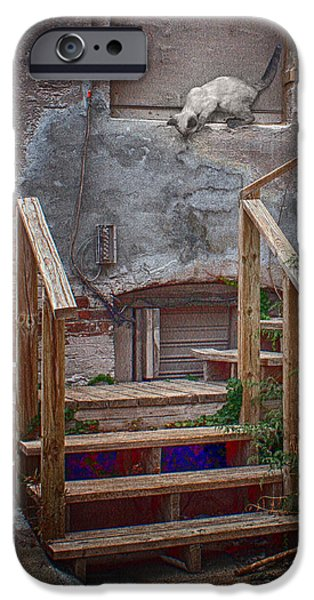 Boarded Up iPhone Cases - Urban Exploration iPhone Case by Nikolyn McDonald