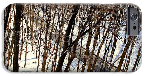 Snowy Day iPhone Cases - Urban Forest at Dusk iPhone Case by Valentino Visentini