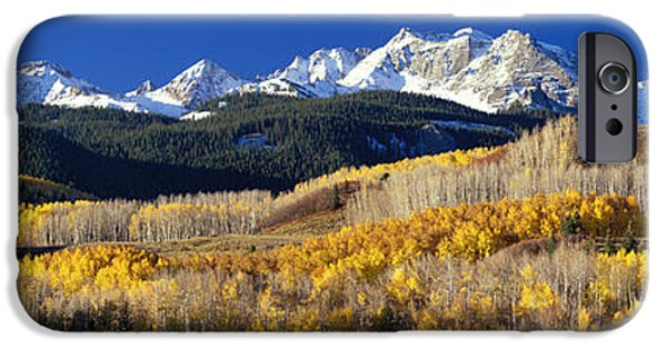 Snowy Day iPhone Cases - Usa, Colorado, Rocky Mountains, Aspens iPhone Case by Panoramic Images