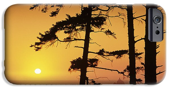 State Parks In Oregon iPhone Cases - Usa, Ecola State Park Oregon, Tillamook iPhone Case by Greg Vaughn