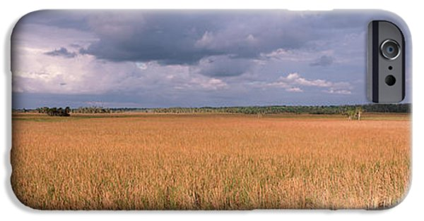 National Preserves iPhone Cases - Usa, Florida, Big Cypress National iPhone Case by Panoramic Images
