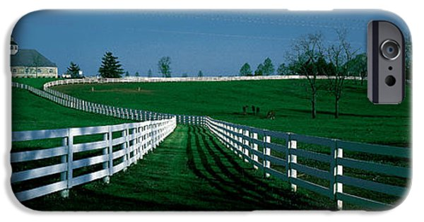 Crops iPhone Cases - Usa, Kentucky, Lexington, Horse Farm iPhone Case by Panoramic Images