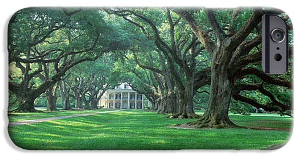Pathway iPhone Cases - Usa, Louisiana, New Orleans, Oak Alley iPhone Case by Panoramic Images