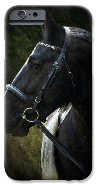 Horse iPhone Cases - Val Headshot iPhone Case by Fran J Scott