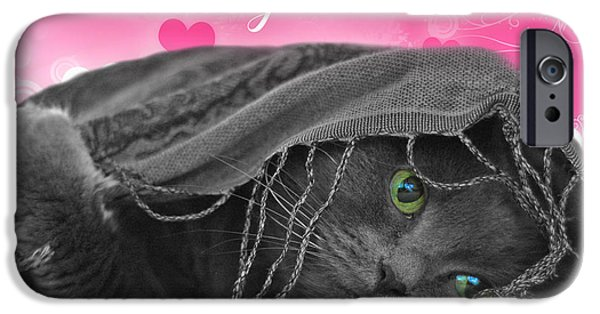 Joann Vitali iPhone Cases - Valentine Cat iPhone Case by Joann Vitali