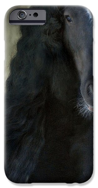 Stallion iPhone Cases - Valentino Dreams iPhone Case by Fran J Scott