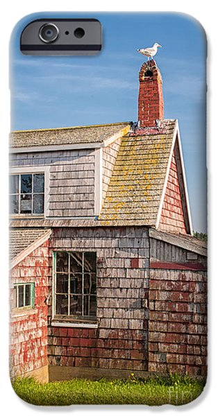 Lobster Shack iPhone Cases - Vanishing Maine iPhone Case by Scott Thorp