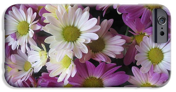 Christmas Greeting iPhone Cases - VEGAS Butterfly Garden Flowers Colorful Romantic Interior Decorations iPhone Case by Navin Joshi