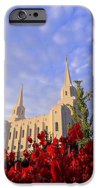 Fall Season iPhone Cases - Velvet iPhone Case by Chad Dutson