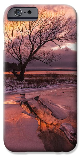 Charlotte iPhone Cases - Winter- Charlotte VT- Sunset-Tree-silhouette  iPhone Case by Andy Gimino