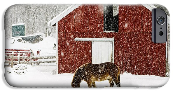Storm Photographs iPhone Cases - Vermont Christmas Eve Snowstorm iPhone Case by Edward Fielding