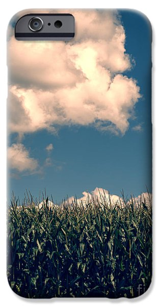 Field. Cloud iPhone Cases - Vermont Cornfield iPhone Case by Edward Fielding