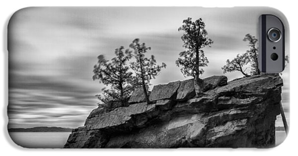 Nature Scene iPhone Cases - Vermont Lake Champlain boulder trees black and white iPhone Case by Andy Gimino