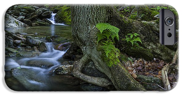 Tree Roots iPhone Cases - Vermont landscape brook stream forest waterfall iPhone Case by Andy Gimino