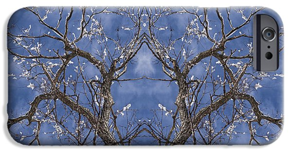 Recently Sold -  - New England Snow Scene iPhone Cases - Vermont Winter mirror Trees snow sky iPhone Case by Andy Gimino