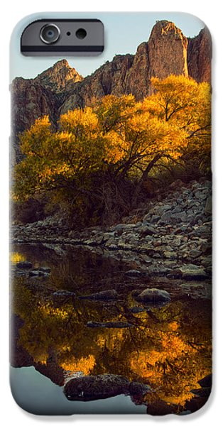 Vertical fall color reflections iPhone Case by Dave Dilli