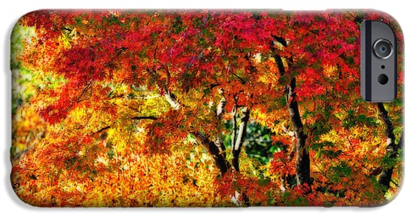Red Leaf Digital iPhone Cases - Vibrance of Autumn iPhone Case by Kaye Menner