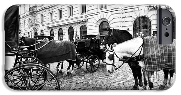 Horse And Buggy iPhone Cases - Vienna Horses iPhone Case by John Rizzuto