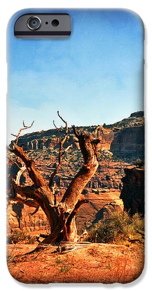 View Of The Canyon iPhone Case by Marty Koch