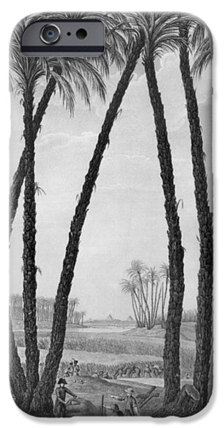 Landscapes Drawings iPhone Cases - View of the ruins of Memphis seen from the south east iPhone Case by Jean Louis Delignon