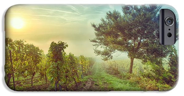 Vineyards Of Alsace Photographs iPhone Cases - Vignoble alsacien iPhone Case by Bach Jockers Pia