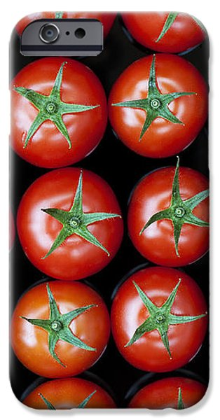 Vine Tomato Pattern iPhone Case by Tim Gainey