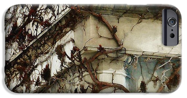 Ledge Mixed Media iPhone Cases - Vines iPhone Case by Victoria Fischer