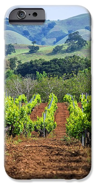 Metal Vineyard Print iPhone Cases - Vineyard and Rolling Hills iPhone Case by L J Oakes